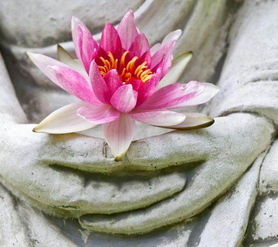 Bouddha mains tenant une fleur