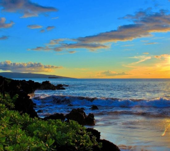 hawaii appelle onedancetribe blog